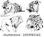 vector drawings sketches...   Shutterstock .eps vector #1053982163
