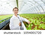 young successful agro engineer... | Shutterstock . vector #1054001720