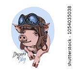 funny pig in a retro leather... | Shutterstock .eps vector #1054035038