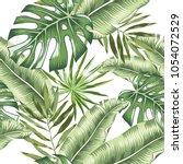 green banana  monstera palm...   Shutterstock .eps vector #1054072529