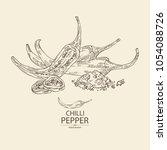 chilli pepper  a piece of hot...   Shutterstock .eps vector #1054088726