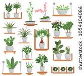 different green homeplants... | Shutterstock .eps vector #1054104086
