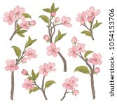 blooming tree. set collection....   Shutterstock .eps vector #1054153706