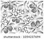 berry fruit  illustration... | Shutterstock . vector #1054237694
