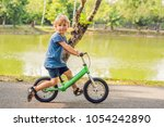 little boy on a bicycle. caught ... | Shutterstock . vector #1054242890