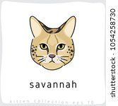 savannah   cat breed collection ... | Shutterstock .eps vector #1054258730