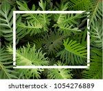 natural  fresh template design... | Shutterstock .eps vector #1054276889
