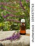 sage  salvia essential oil ... | Shutterstock . vector #1054375763
