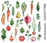 watercolor vegetarian set | Shutterstock . vector #1054377986