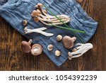 a combination of straw mushroom ... | Shutterstock . vector #1054392239