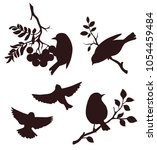 set of sping bird and twig... | Shutterstock .eps vector #1054459484