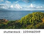 amazing view of calm sea.... | Shutterstock . vector #1054460549