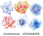 set with watercolor flowers.... | Shutterstock . vector #1054468496