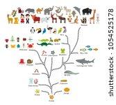 evolution in biology  scheme... | Shutterstock .eps vector #1054525178