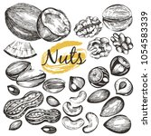 vector set with hand drawn nuts | Shutterstock .eps vector #1054583339