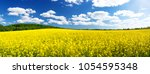 yellow rapeseed field panorama... | Shutterstock . vector #1054595348