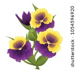 viola flower.vector illustration | Shutterstock .eps vector #1054596920