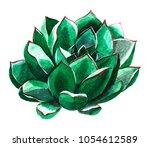 watercolor succulent  green and ... | Shutterstock . vector #1054612589