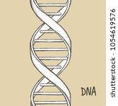 dna symbol. dna helix symbol.... | Shutterstock .eps vector #1054619576