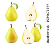 pears isolated on white... | Shutterstock .eps vector #1054679999