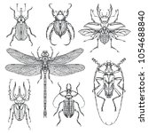 vector set of various insects... | Shutterstock .eps vector #1054688840