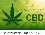 image cannabis of the formula... | Shutterstock . vector #1054761476