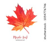 Leaves Watercolor Maple Fall...