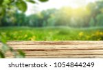table background and spring... | Shutterstock . vector #1054844249
