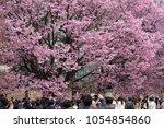 tokyo  japan   march 24th  2018 ...   Shutterstock . vector #1054854860