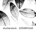 texture of dry leaves surface.... | Shutterstock .eps vector #1054894160
