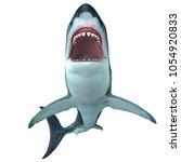 Megalodon Shark Front Profile...