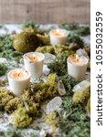 fairy moss garden still life... | Shutterstock . vector #1055032559