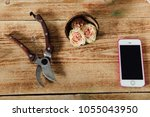 top view of buds of roses ... | Shutterstock . vector #1055043950