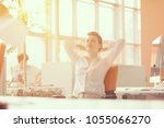 happy young business woman... | Shutterstock . vector #1055066270