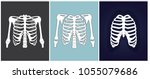three different x rays of chest.... | Shutterstock .eps vector #1055079686