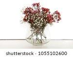 beautiful vase of flowers over... | Shutterstock . vector #1055102600
