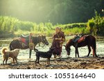 buddhist monk with brown robe... | Shutterstock . vector #1055164640