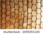 macro  detail of lizard skin ... | Shutterstock . vector #1055251133