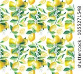 seamless pattern with... | Shutterstock . vector #1055271548