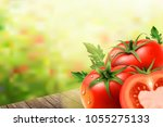 refreshing tomatoes elements ... | Shutterstock .eps vector #1055275133