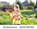child girl with hen in hands in ... | Shutterstock . vector #1055296460
