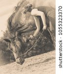 Small photo of Animal and human love, equine concept. Jockey woman taking care of horse
