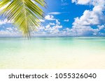 palm and tropical beach | Shutterstock . vector #1055326040
