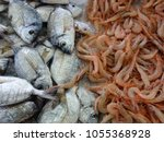 fresh fishes in a market. ...   Shutterstock . vector #1055368928
