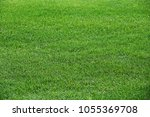 fragment of a field from a... | Shutterstock . vector #1055369708