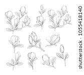 set of floral elements. bundle... | Shutterstock .eps vector #1055418140