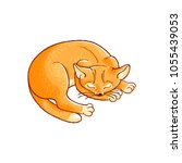 sketch cute cat animal sleeping ... | Shutterstock .eps vector #1055439053