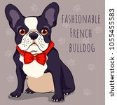 Fashionable Cute French Bulldo...