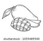 mango fruit vector set.... | Shutterstock .eps vector #1055489540