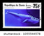 Small photo of MOSCOW, RUSSIA - MARCH 18, 2018: A stamp printed in Benin shows Blue Whale (Balaenoptera musculus), Sea Mammals serie, circa 1996